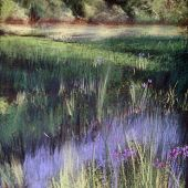 Sold to Private Collector - Mendocino, California: Wild iris - Pastel Landscape