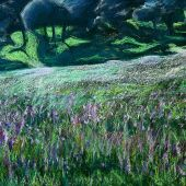 Sold to Private Collector - Stanford Hills, California: Spring wildflowers - Pastel Landscape