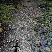 Kyoto, Japan: Path, Temple - Landscape - Photography
