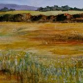Mendocino, California: Field by the ocean