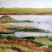 Artist's Private Collection - San Francisco Bay, Palo Alto, California: Baylands
